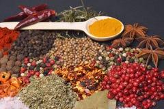 De Samenstelling met verschillende kruiden en kruiden Royalty-vrije Stock Foto