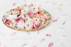 De samenstelling van bloemplaten stock foto's