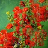De samenstelling van de bloem Stock Afbeelding