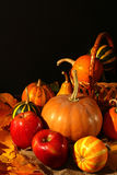 De samenstelling van de dankzeggingsdecoratie Stock Foto's