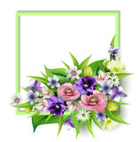 De samenstelling van de heerlijke de lentebloemen voor ontwerp van prentbriefkaaren, brochures, banners, vliegers, isoleerde, op  Royalty-vrije Stock Afbeeldingen