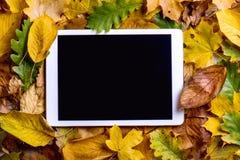 De samenstelling van de herfst De vaas met droog doorbladert, appel en kaarsen bij het ontslaan Kleurrijke bladeren en tablet Het Stock Afbeelding