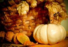 De samenstelling van de herfst met pompoen Stock Foto's