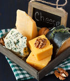 De samenstelling van de kaas. Royalty-vrije Stock Fotografie