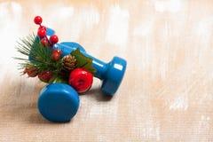 De samenstelling van de Kerstmissport met domoren, bessen en sparren Stock Afbeeldingen