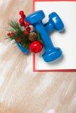 De samenstelling van de Kerstmissport met domoren, notitieboekje, bessen Royalty-vrije Stock Afbeelding