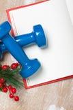 De samenstelling van de Kerstmissport met domoren, notitieboekje, bessen Stock Afbeelding