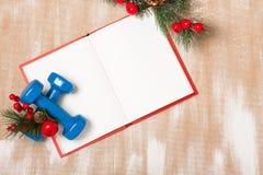 De samenstelling van de Kerstmissport met domoren, notitieboekje, bessen Royalty-vrije Stock Fotografie