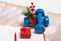 De samenstelling van de Kerstmissport met domoren, notitieboekje, bessen Royalty-vrije Stock Afbeeldingen