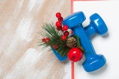 De samenstelling van de Kerstmissport met domoren, rode giftdoos, berrie Stock Foto's