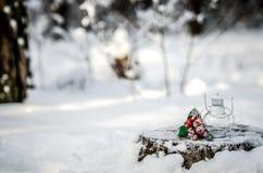 De samenstelling van de lamp en de tak met rode bessen op een boomstomp in het de winterbos Royalty-vrije Stock Foto