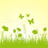 De samenstelling van de lente Royalty-vrije Stock Afbeelding