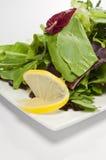 De samenstelling van de salade Stock Afbeelding
