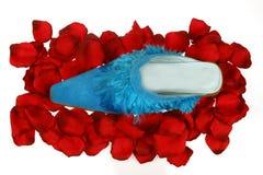 De samenstelling van de schoen Stock Foto's