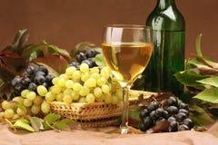 De samenstelling van de wijn Royalty-vrije Stock Fotografie