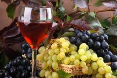 De samenstelling van de wijn Stock Afbeelding