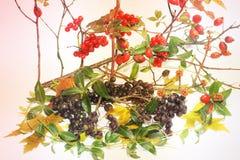 De samenstelling van de herfst De vaas met droog doorbladert, appel en kaarsen bij het ontslaan De samenstelling bestaat uit vibu stock fotografie