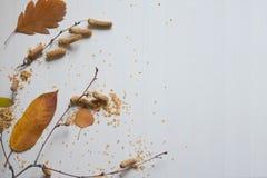 De samenstelling van de herfst De vaas met droog doorbladert, appel en kaarsen bij het ontslaan Patroon van droge bladeren, berkt royalty-vrije stock afbeeldingen