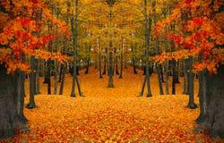 De samenstelling van de herfst De vaas met droog doorbladert, appel en kaarsen bij het ontslaan De rode bomen van aangezicht tot  royalty-vrije stock fotografie
