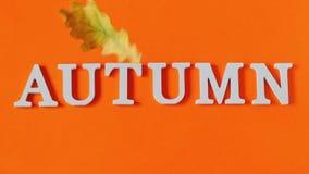 De samenstelling van de herfst De vaas met droog doorbladert, appel en kaarsen bij het ontslaan De tekstherfst van witte brieven  stock videobeelden