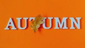 De samenstelling van de herfst De vaas met droog doorbladert, appel en kaarsen bij het ontslaan De tekstherfst van witte brieven  stock footage