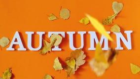 De samenstelling van de herfst De vaas met droog doorbladert, appel en kaarsen bij het ontslaan De tekstherfst van witte brieven  stock video