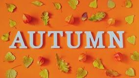 De samenstelling van de herfst De vaas met droog doorbladert, appel en kaarsen bij het ontslaan Word de Herfst van witte brieven  stock video
