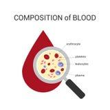 De samenstelling van het bloed Stock Fotografie