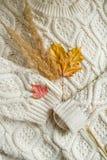 De samenstelling van het de herfststilleven met kop thee met citroen en de herfstbladeren op gebreide achtergrond Stock Afbeelding