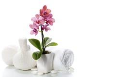 De samenstelling van het kuuroord met mooie roze orchidee stock afbeeldingen