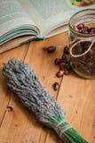 De samenstelling van hulpmiddelen van natuurlijke het helen kruiden Royalty-vrije Stock Fotografie