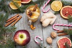 De samenstelling van Kerstmis Nette takken, suikergoedriet, verwarmende thee met gember en citroen, droge sinaasappelen, Royalty-vrije Stock Foto's