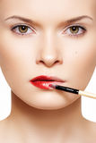 De samenstelling van lippen. De rode lippenstift die van Applyng lippenborstel gebruikt Stock Afbeelding