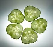 De samenstelling van vijf komkommerplakken Stock Afbeeldingen
