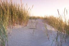 De samenstellingen van de woestijn. De duinen van de woestijn Stock Foto's