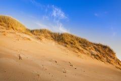 De samenstellingen van de woestijn. De duinen van de woestijn Stock Fotografie