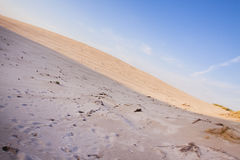 De samenstellingen van de woestijn. De duinen van de woestijn Royalty-vrije Stock Afbeelding
