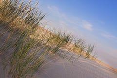 De samenstellingen van de woestijn. De duinen van de woestijn Royalty-vrije Stock Afbeeldingen