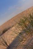 De samenstellingen van de woestijn. De duinen van de woestijn Stock Afbeelding