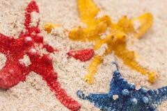 De samenstellingen van het strand. Shells op zand Stock Afbeeldingen