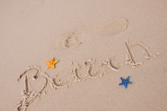 De samenstellingen van het strand. Shells op zand Royalty-vrije Stock Afbeeldingen