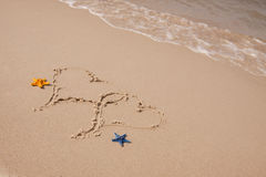 De samenstellingen van het strand. Shells op zand Stock Foto's