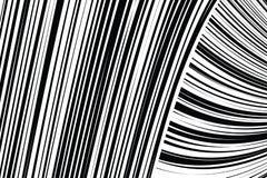 De samenvatting trok Zwart-witte Lijnenachtergrond scheef Royalty-vrije Stock Afbeeldingen