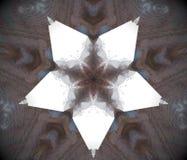 De samenvatting uitgedreven witte ster van de mandala 3D illustratie vector illustratie