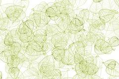 De Samenvatting van bladeren Royalty-vrije Stock Foto