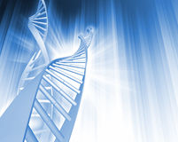 De Samenvatting van de DNA- Bundel Stock Afbeelding