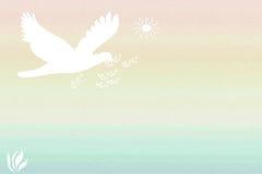 De Samenvatting van de Duif van de vrede Vector Illustratie