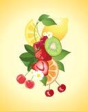 De samenvatting van het fruit royalty-vrije illustratie