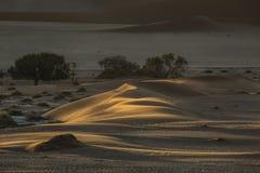 De samenvatting van het zandduin van vormen en kleur Stock Foto