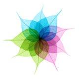 De samenvatting van kleurenbladeren Royalty-vrije Stock Fotografie